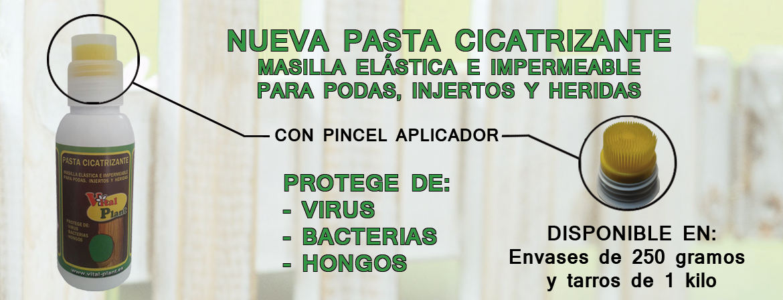 PASTA DE PODA  VITAL PLANT